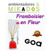 MIKADO ORIGIN GOA , FRAMBOISIER EN FLEUR